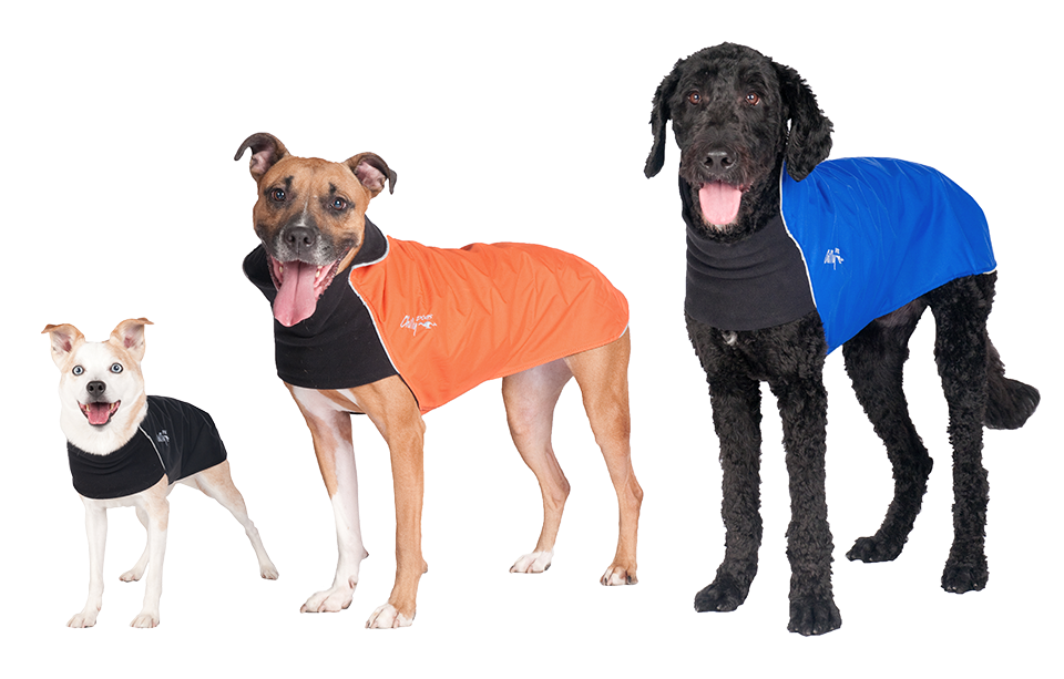Chilly Dogs' Trail Blazer Coat being shown worn comfortably by three dogs, a small one, a medium sized one and a big one.
